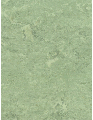 Vendita online pavimento in Linoleum da 2,5 mm - ai prezzi più bassi d'Italia! - eSAEM.it