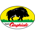 PENNELLI CINGHIALE